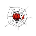 spider-62621_640